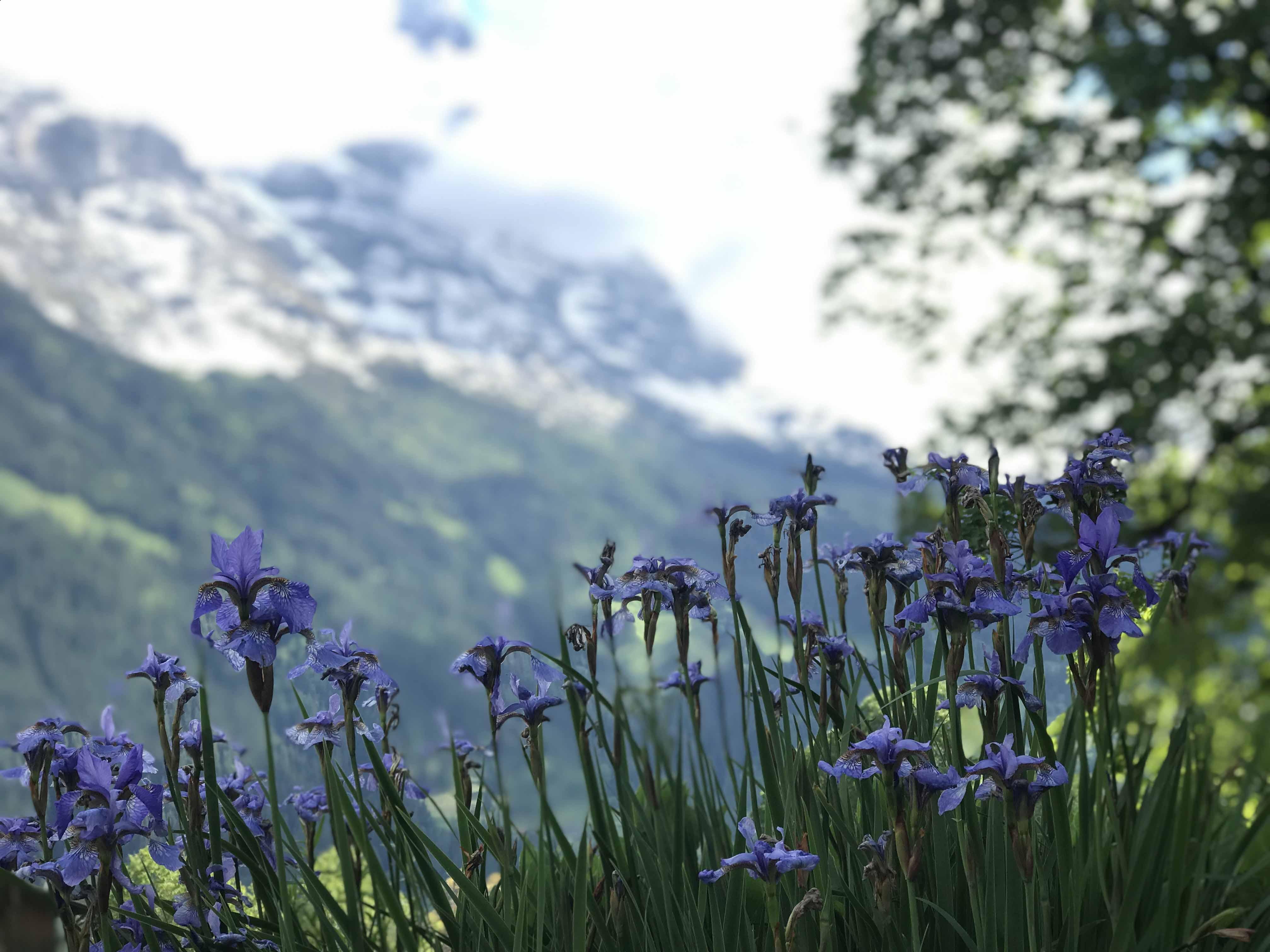 Herbst in Grindelwald