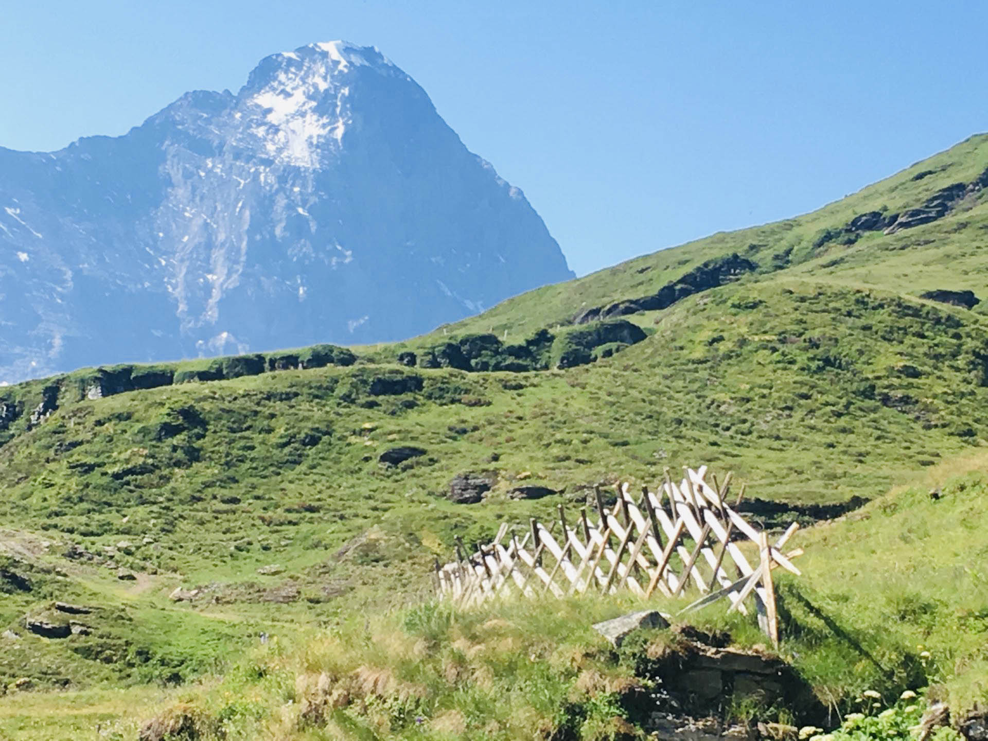 Ferienwohnung Chalet Anemone Grindelwald-Scharhag Eiger