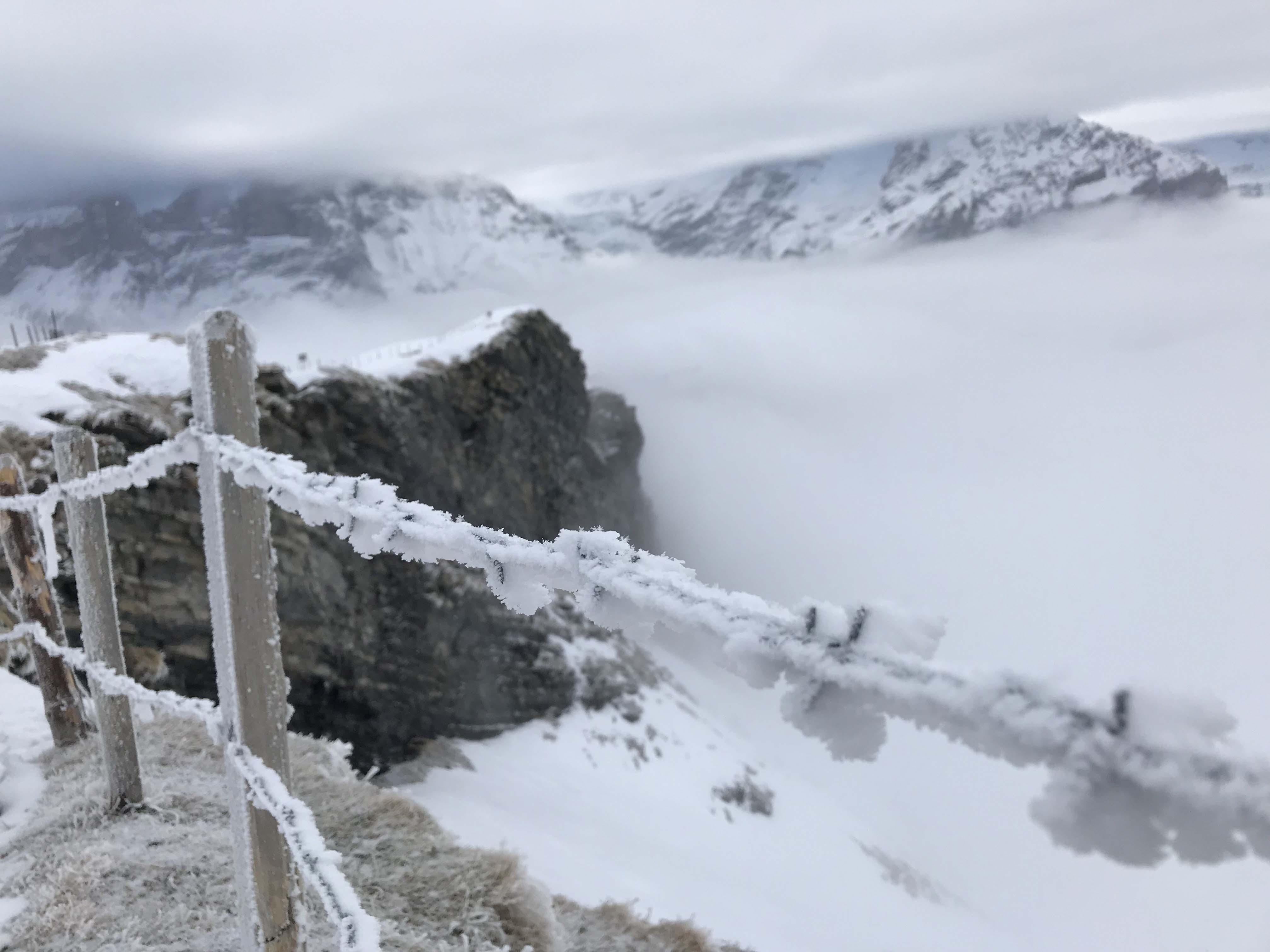 Ferienwohnung Chalet Anemone Grindelwald-Adis Skibar