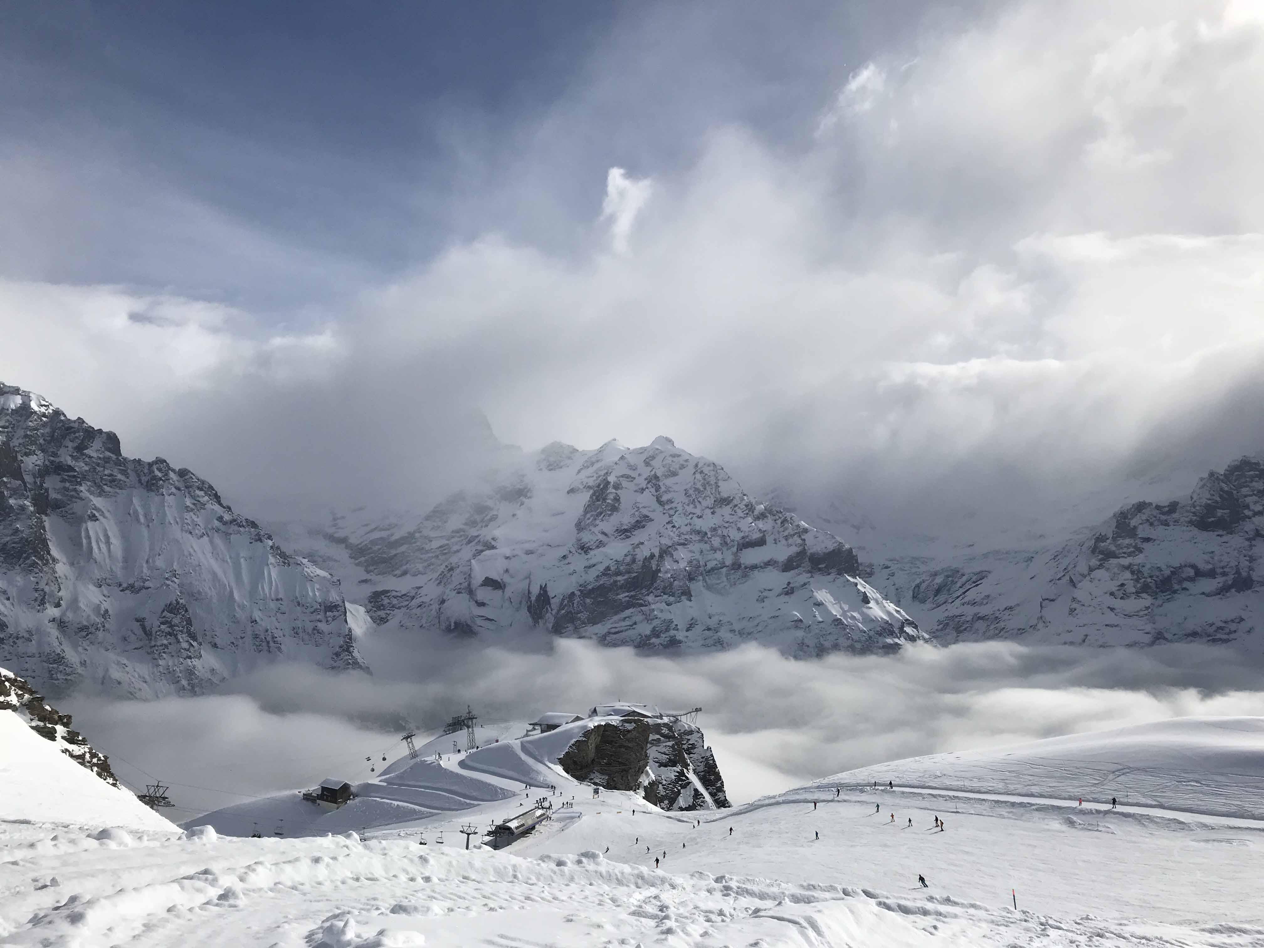 Ferienwohnung Chalet Anemone-Grindelwald First