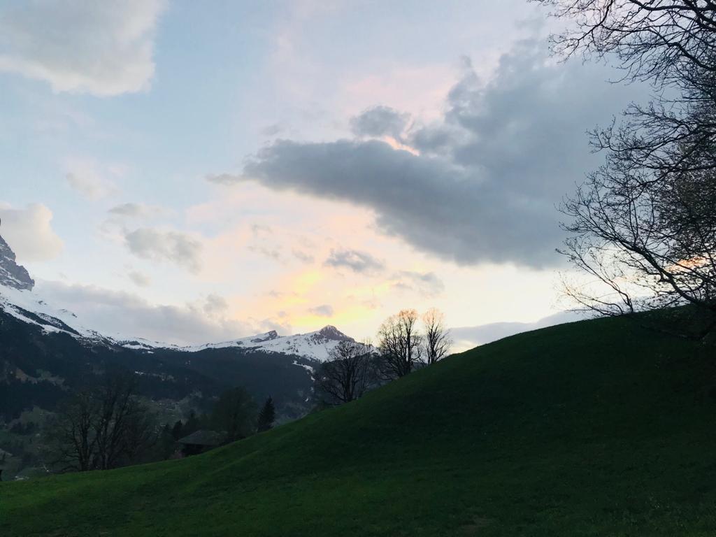 Ferienwohnung Chalet Anemone Grindelwald-Bodmi Arena