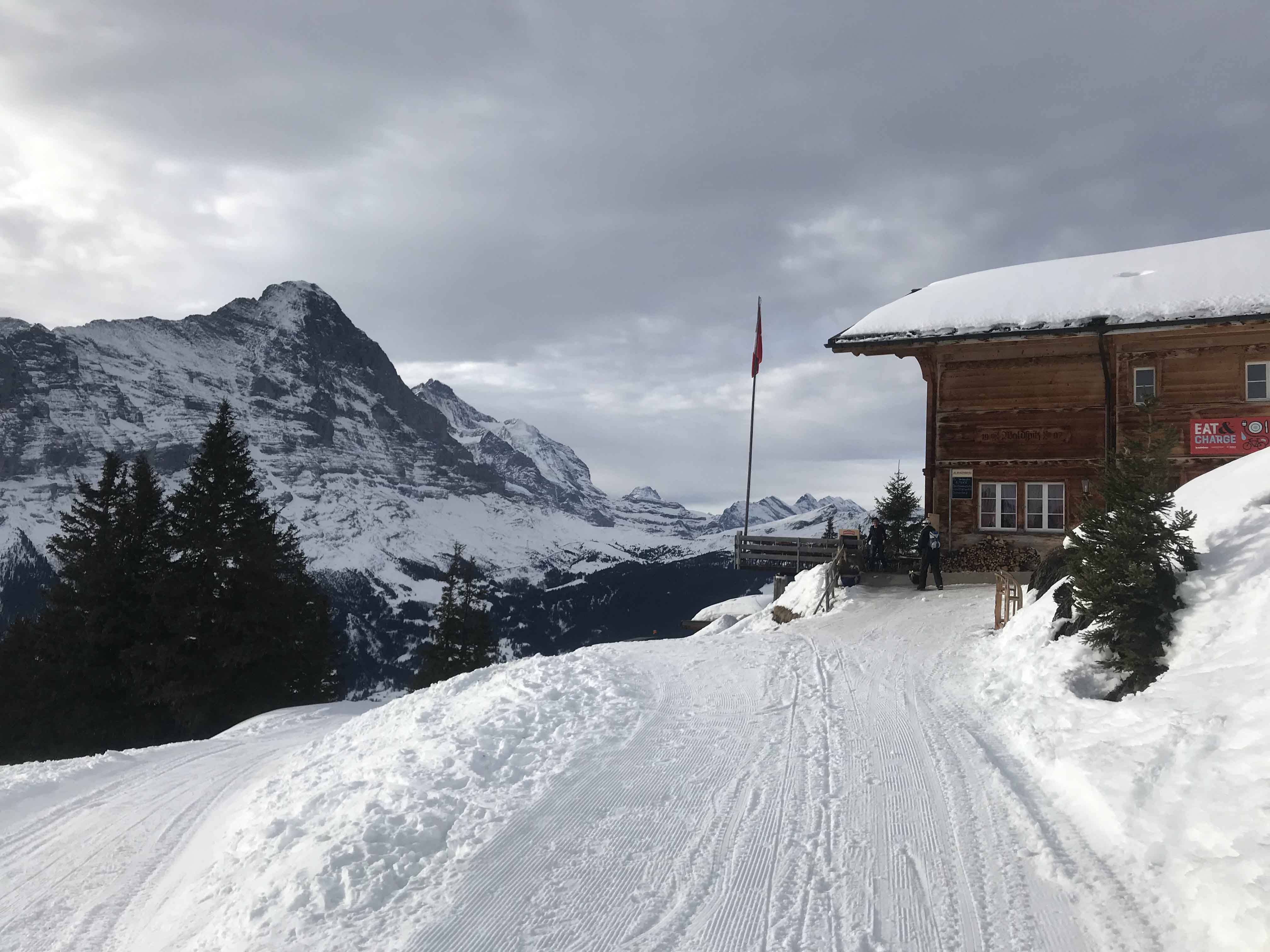 Ferienwohnung Chalet Anemone Grindelwald-Berggasthaus Waldspitz