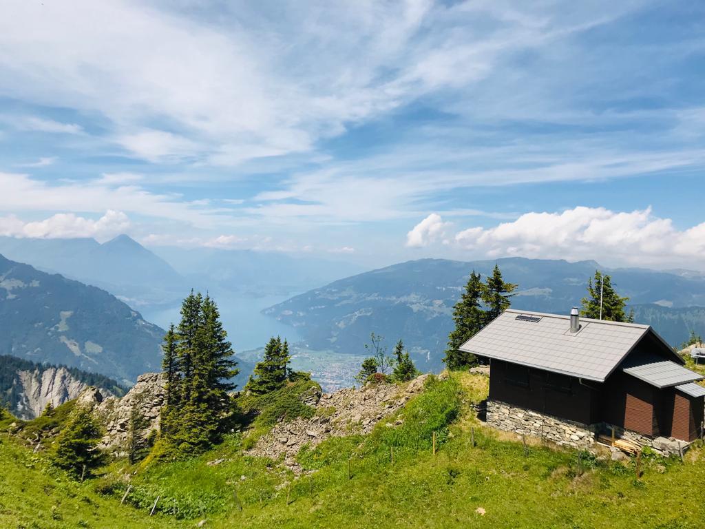 Ferienwohnung Chalet Anemone Grindelwald-Schynige Platte
