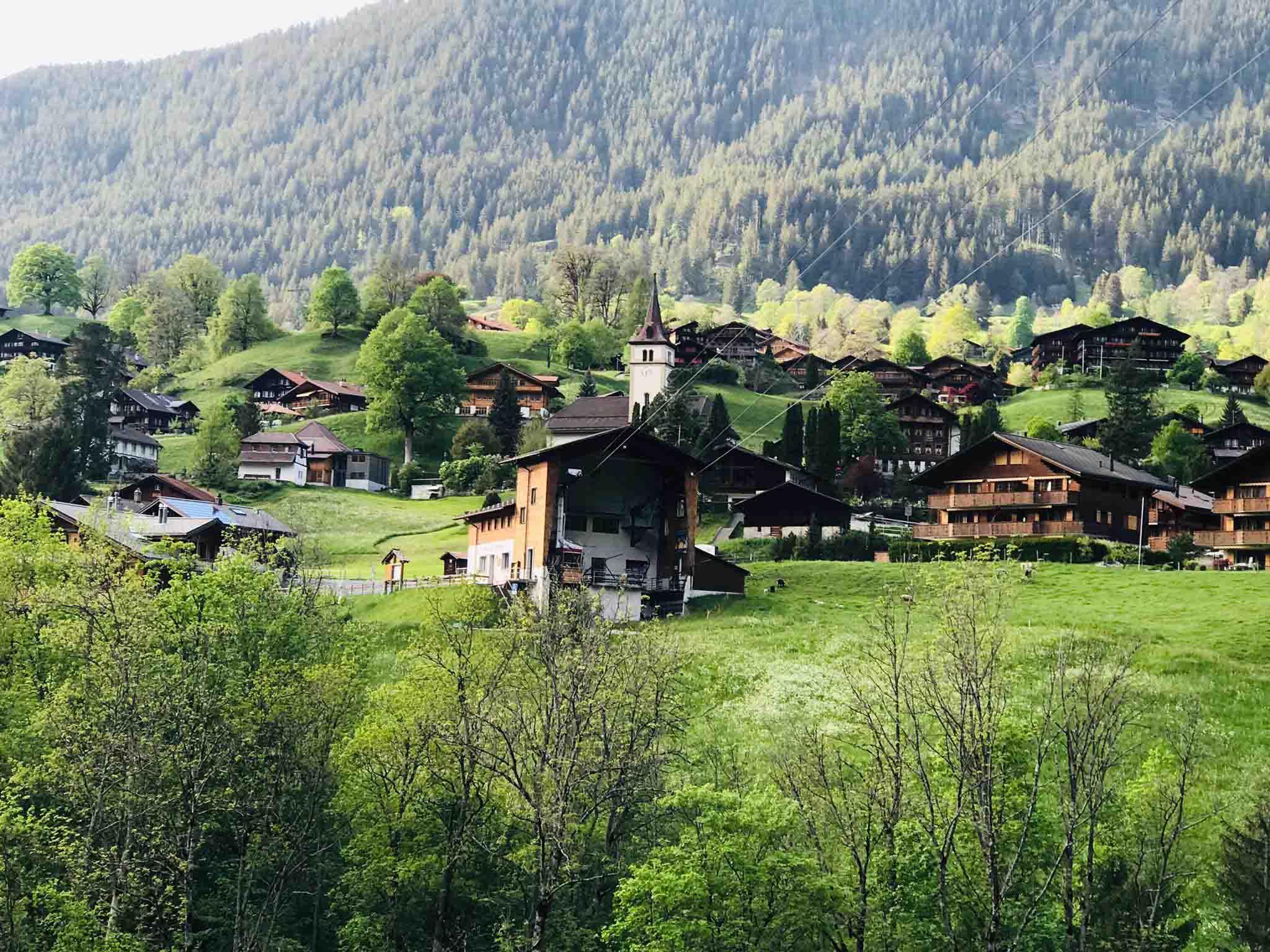 Ferienwohnung Chalet Anemone Grindelwald - Pfingstegg