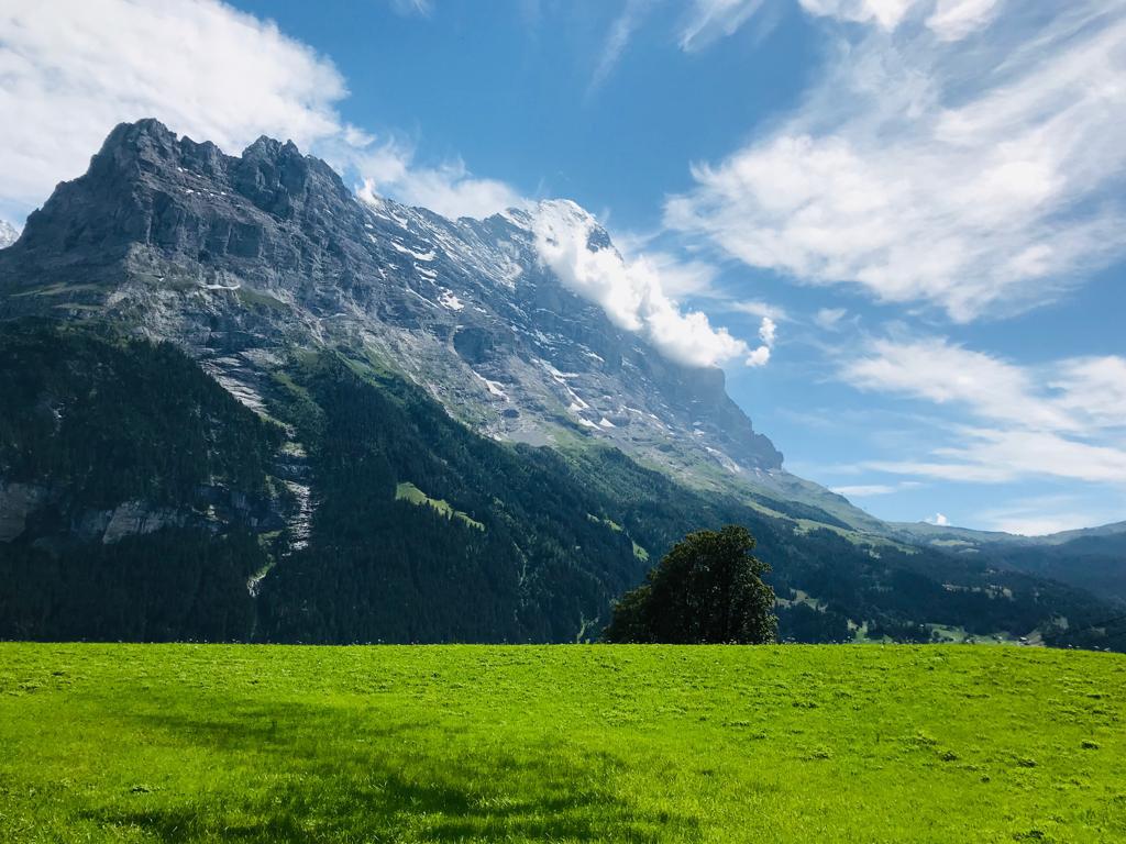 Ferienwohnung Chalet Anemone Grindelwald - Eiger Nordwand